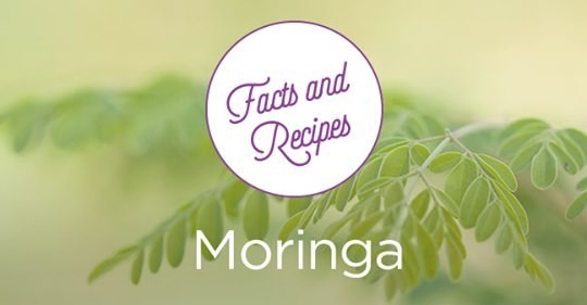 Moringa, A Miracle Product