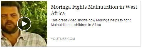 Moringa Doing Great Work Fighting Malnutrition In Africa